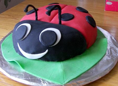 ladybug-cake.jpg