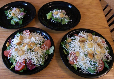 chicken-breast-salads-b4-chicken.jpg
